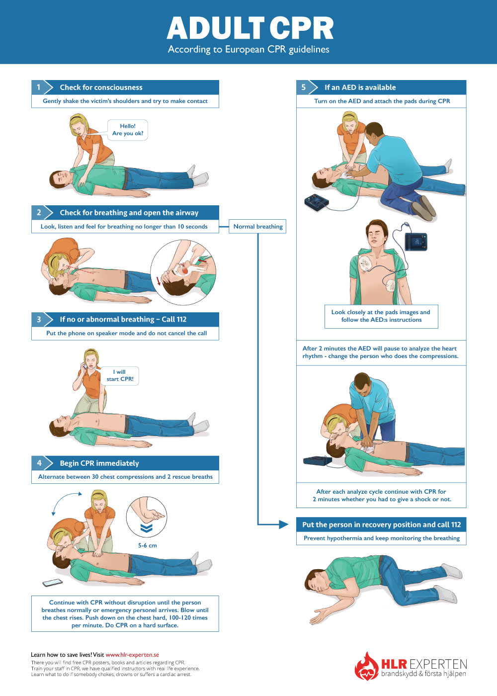 CPR Steps Poster for Adults. CPR guidelines. How to do CPR?